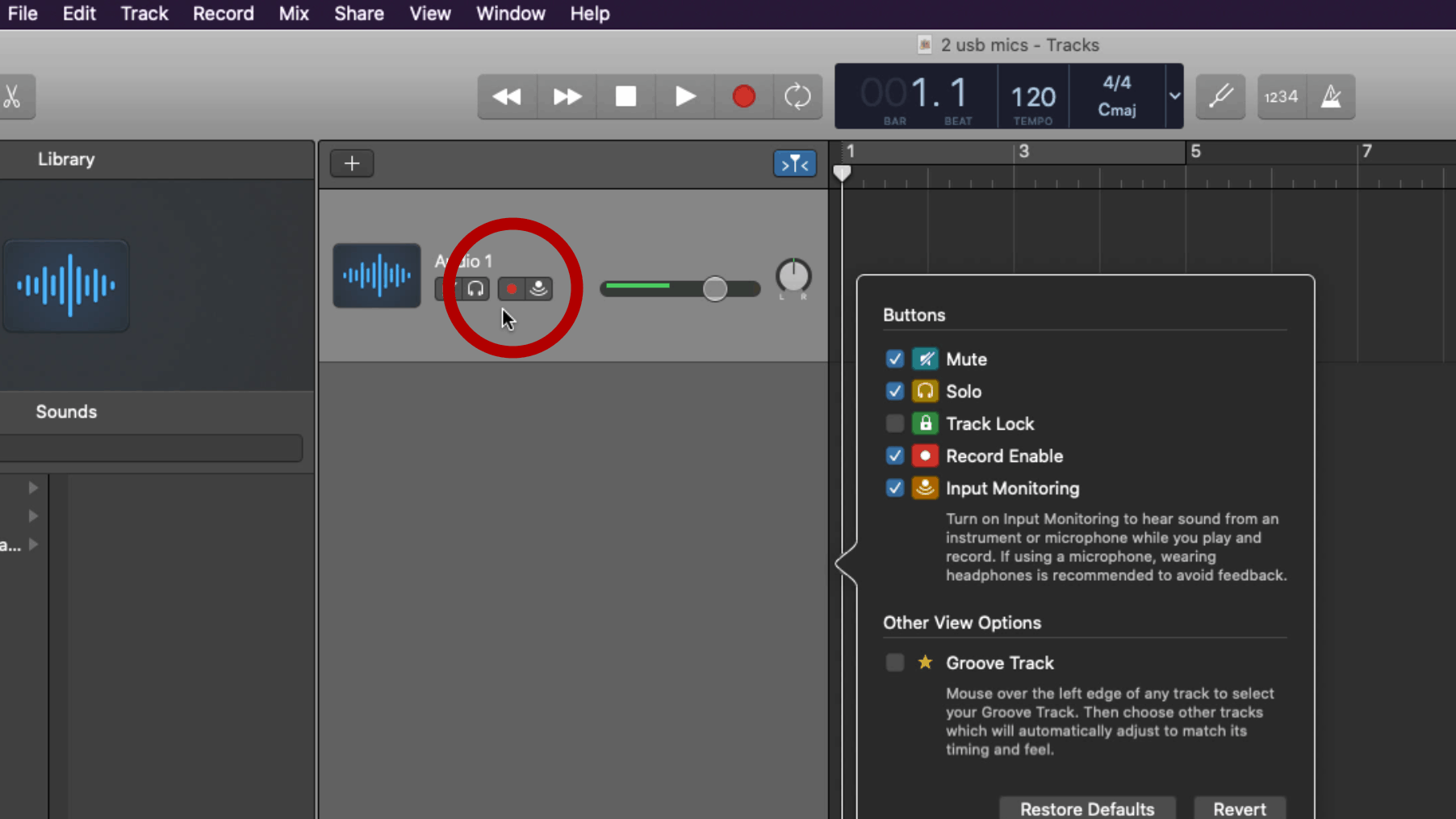Record Enable in Garageband Screenshot