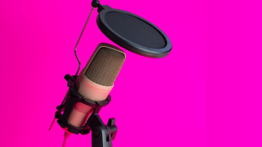 image of mic stand and pop filter