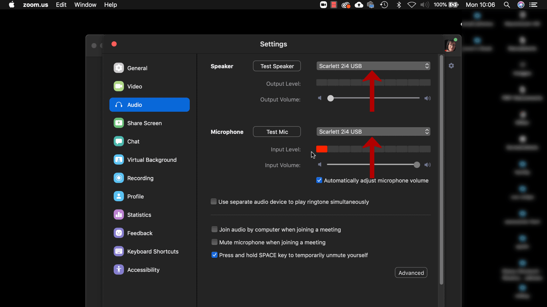 zoom screenshot - access audio device settings